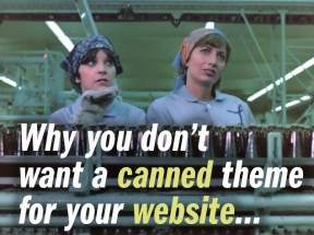 Why you don't want a canned theme for your website